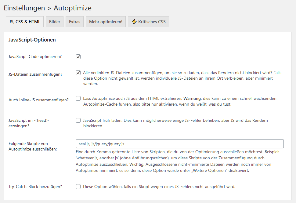 Page Speed verbessern - Autoptimize Einstellungen